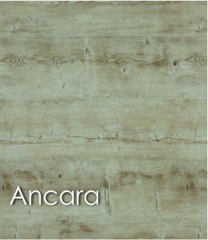 Ancara